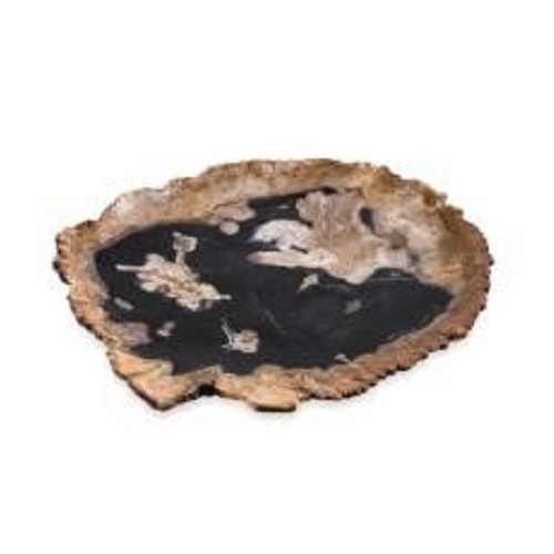 GALACTIC PETRIFIED WOOD PLATE